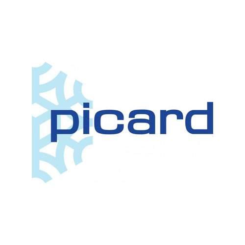 Le logo de l'enseigne Picard, spécialiste français des plats surgelés. Il s'agit d'une référence d'Antoine Chadufau en conseil en communication.